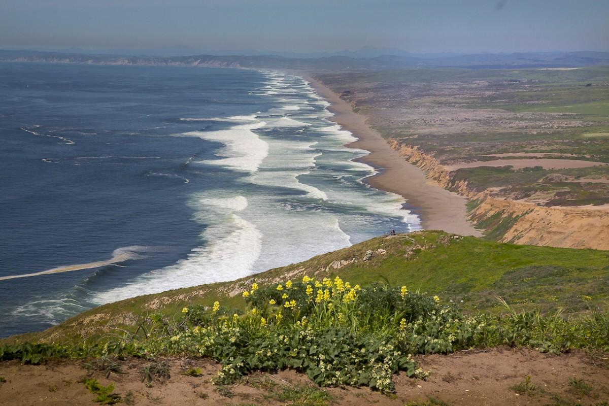 Marin County Beaches | Dillon beach, Pacific coast highway