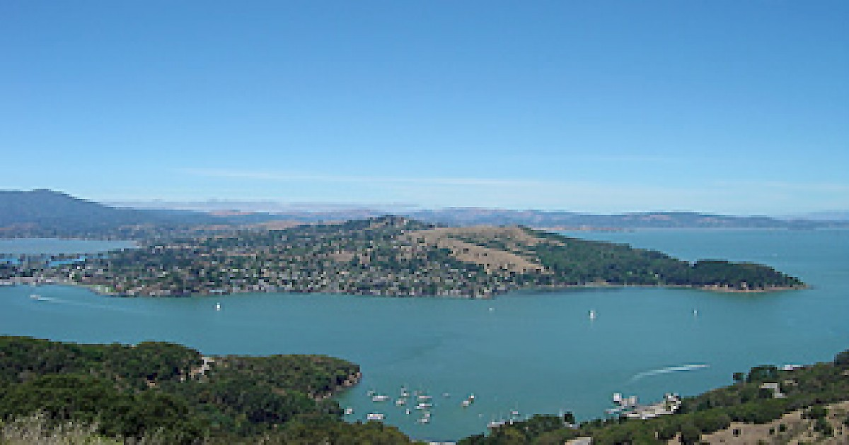 angel island Learn about departure and arrival times with the angel island schedule the angel island schedule has all the information you need for holidays and more.