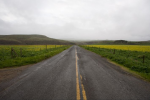 Pierce Point Road in Point Reyes
