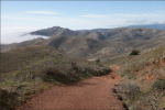 Slacker Trail in Marin Headlands