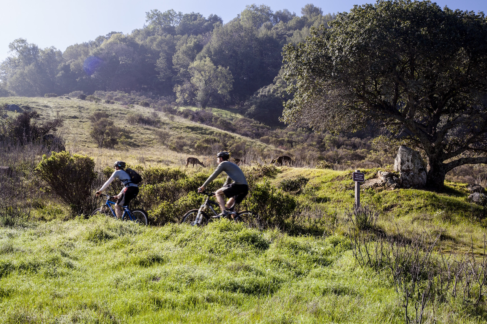 Bike Marin County a Lifetime in Marin County