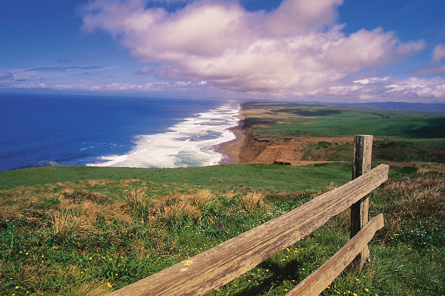 Image result for point reyes
