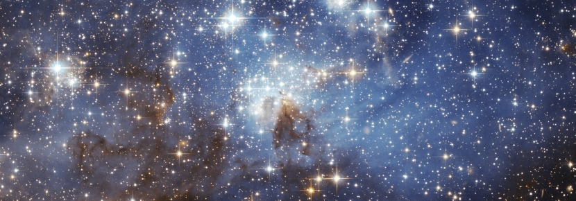 Point Reyes National Seashore Assn - An Evening of Lights: Astronomy
